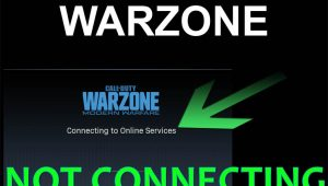 Warzone stuck on Connecting to Online Services